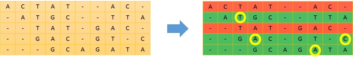Tesi: Algoritmi per l'assemblaggio di multiple stringhe diDNA